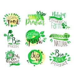 Organic Farm Food Promo Signs Colorful Set vector image vector image