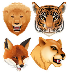 a set of wild animal head vector image