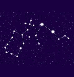 aquarius constellation starry night sky zodiac vector image