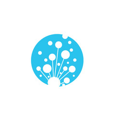 dandelion icon design vector image
