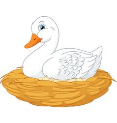 duck in nest vector image