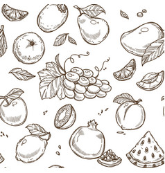 fruits sketch seamless pattern background vector image