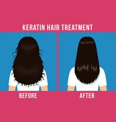 hair care treatment vector image