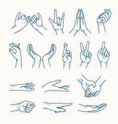 hands gestures icons woman hands icons vector image
