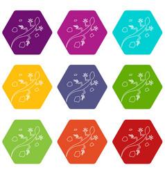 Salamander icons set 9 vector