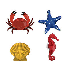 drawing of crab star seahorse shell vector image