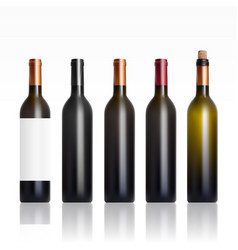 set of open and close wine bottles vector image