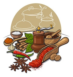 spices and flavors vector image
