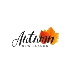 autumn new season sales and discounts deals vector image