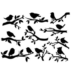 bird and twig silhouettes cute birds and on vector image