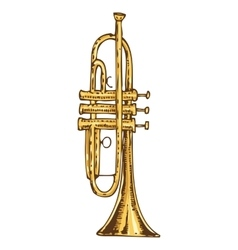 Brass Trumpet Isolated on a White vector
