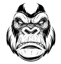 ferocious gorilla head vector image