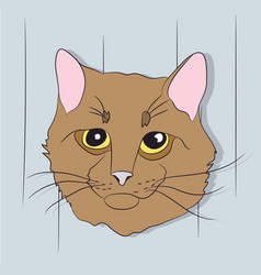 Portrait of a cat on a background vector