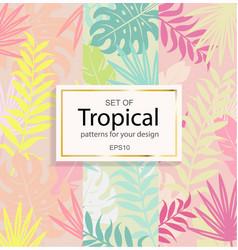 set modern tropical background for your design vector image