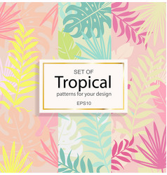 set of modern tropical background for your design vector image