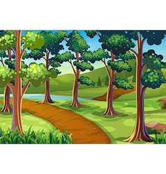 Scene with hiking trail in the woods vector image vector image