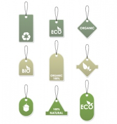 eco recycling tags vector image