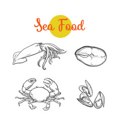 sketch lobster tuna fish squid isolated vector image