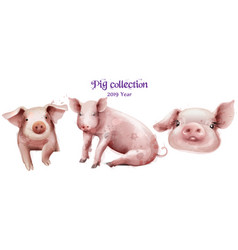 cute pigs icon set in watercolor pig new vector image