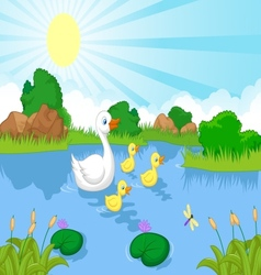 Duck family cartoon swimming vector image