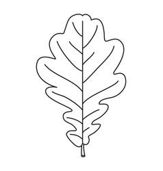 line art black and white oak leaf vector image