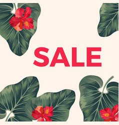 red sale sign on promo poster with leaves and vector image
