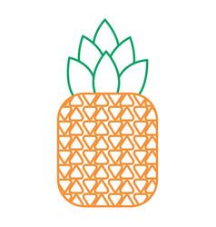 tropical fruit pineapple fresh ripe icon vector image