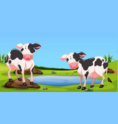 Two cows standing in farmyard vector