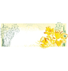 Background with narcissus vector image