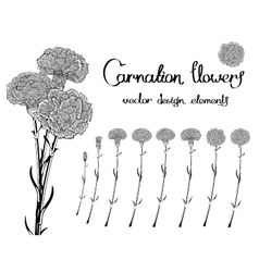Black and white flowers set vector image