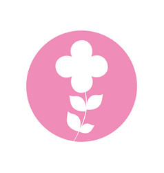 Flower ornate natural icon vector
