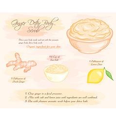 hand drawn of ginger detox salt scrub recipe vector image