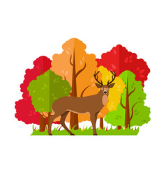 autumn landscape deer in the autumn forest vector image