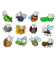 colorful set cartoon insects characters vector image