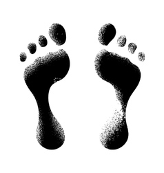 Human footprints vector image