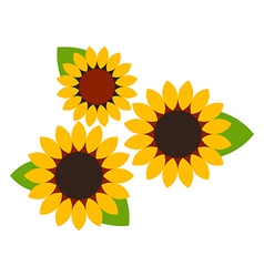 Sunflowers symbol vector image