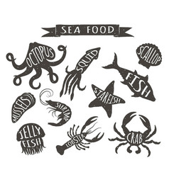 Vintage silhouettes of sea animals with names vector