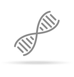 dna genetics icon in trendy thin line style vector image vector image