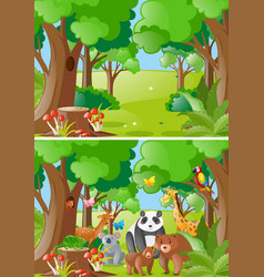 forest scenes with wild animals vector image