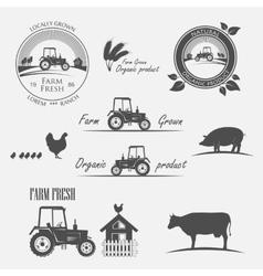 Fresh Farm Produce vector