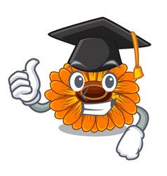Graduation calendula flowers in a cartoon basket vector