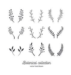 hand drawn vintage floral elements set vector image