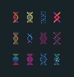 Human dna research technology symbols spiral vector