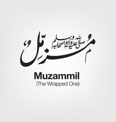 Muzammil vector