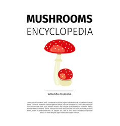 amanita muscaria mushroom vector image