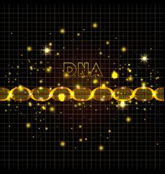 dna molecule on line golden pattern vector image