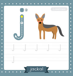 Letter j lowercase tracing practice worksheet of vector