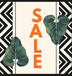 sale poster with two alocasia zulu mask leaves vector image