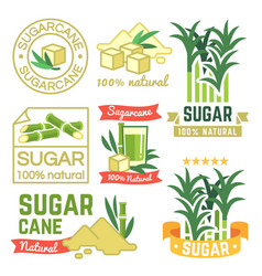 Sugar production labels sugarcane farm badges and vector