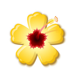 Yellow hibiscus that is national flower hawaii vector